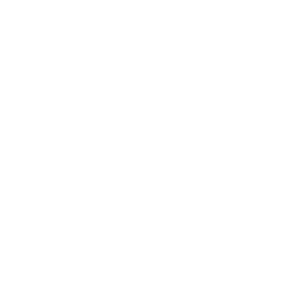 5. Aviacinių konteinerių krautuvai