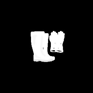 Pirštinės ir batai