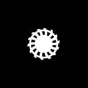Signaliniai diskai